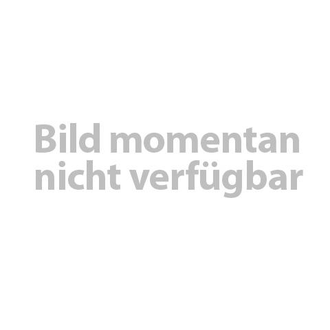 Bauknecht Hebel